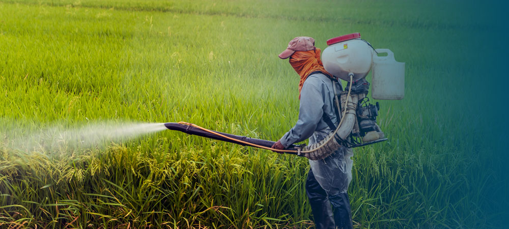 Occupational Safety & Health (OSH) Online Certificate: Insecticide Distribution